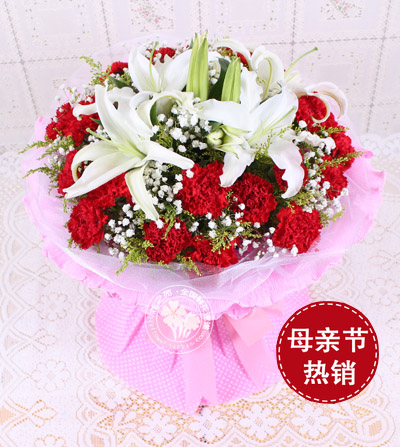 19朵�t色康乃馨/母�鄣�ゴ�-�花人�r花