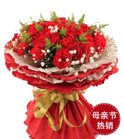 33枝康乃馨/�嘏�的�驯�-�花人�r花
