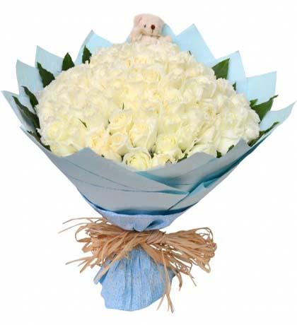 99枝白玫瑰/爱的主打歌-订花人鲜花