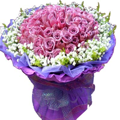 心有灵犀/99朵紫玫瑰-订花人鲜花