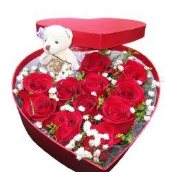 爱情的小礼物/11朵红玫瑰