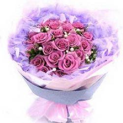 彼此/21朵紫玫瑰