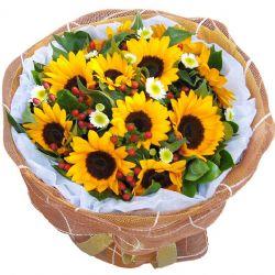 就要你快��/11朵向日葵