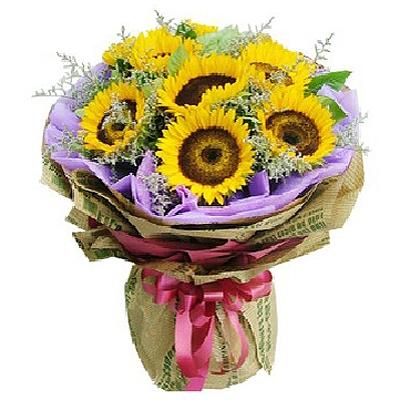 你的笑�/6朵向日葵-�花人�r花