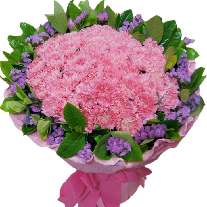 妈妈,我爱你/33朵康乃馨-订花人鲜花