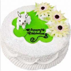 �r奶蛋糕/小兔白白