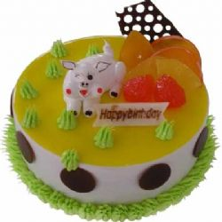 �r奶蛋糕/�N���i���