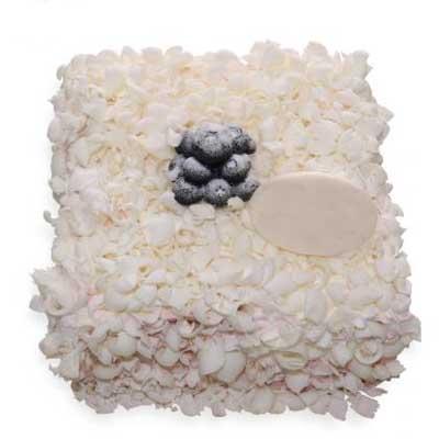 巧克力蛋糕/单纯的爱