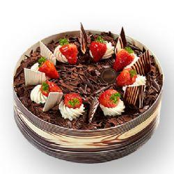 巧克力蛋糕/音乐之城