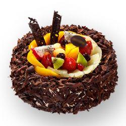 巧克力蛋糕/魔法�T士