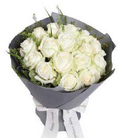 16枝白玫瑰/最初的�粝�
