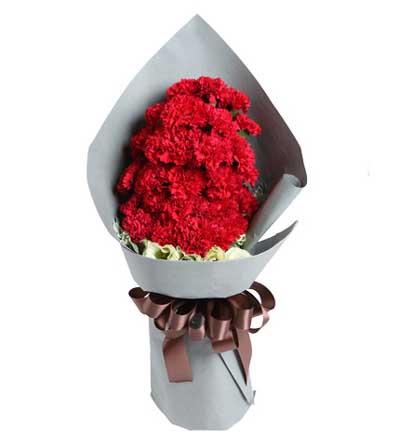 29枝红康乃馨/拥抱温暖的爱-订花人鲜花