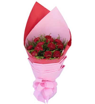 12枝红色康乃馨/好想你