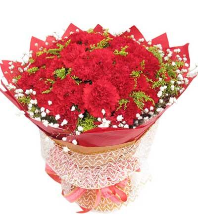 50枝红色康乃馨/馨情无限-订花人鲜花